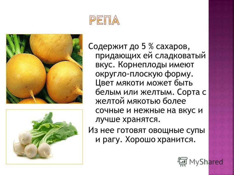 Содержит до 5 % сахаров, придающих ей сладковатый вкус. Корнеплоды имеют округло-плоскую форму. Цвет мякоти может быть белым или желтым. Сорта с желтой мякотью более сочные и нежные на вкус и лучше хранятся. Из нее готовят овощные супы и рагу. Хорошо