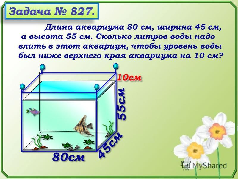 Длина аквариума 80 см, ширина 45 см, а высота 55 см. Сколько литров воды надо влить в этот аквариум, чтобы уровень воды был ниже верхнего края аквариума на 10 см? 55 см 80 см 45 см 10 см 10 см