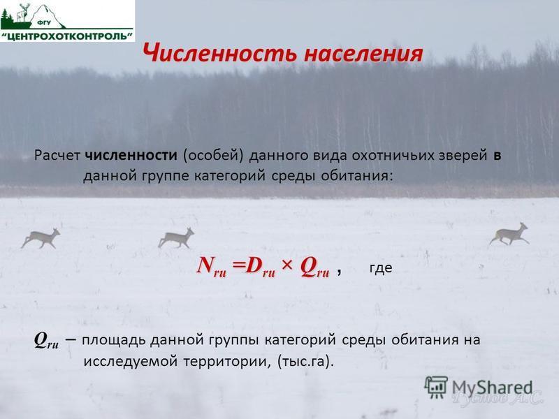 Ч исленность населения Расчет численности (особей) данного вида охотничьих зверей в данной группе категорий среды обитания: N ru =D ru × Q ru N ru =D ru × Q ru, где Q ru – площадь данной группы категорий среды обитания на исследуемой территории, (тыс