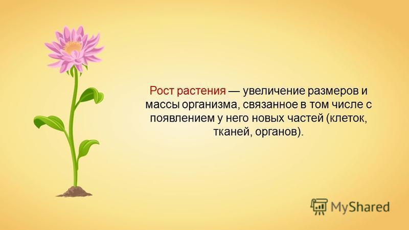 Рост растения увеличение размеров и массы организма, связанное в том числе с появлением у него новых частей (клеток, тканей, органов).