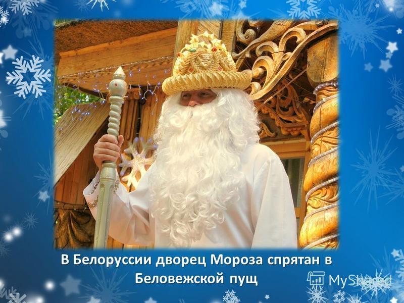 В Белоруссии дворец Мороза спрятан в Беловежской пущ