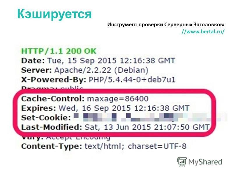 Кэшируется Инструмент проверки Серверных Заголовков: //www.bertal.ru/