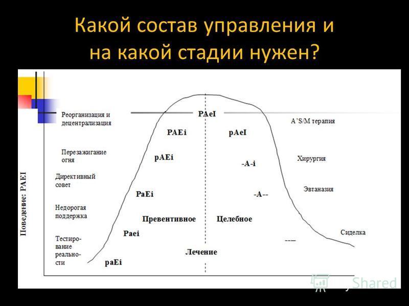 Какой состав управления и на какой стадии нужен?
