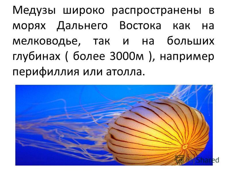 Щупальца некоторых медуз вооружены ядовитыми железами. Например, ожоги гидромедузы гонионемы, которая обитает в Японском море, особо опасны для человека.