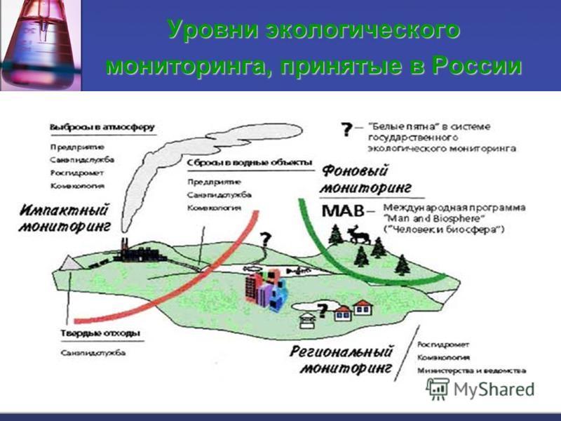 Уровни экологического мониторинга, принятые в России
