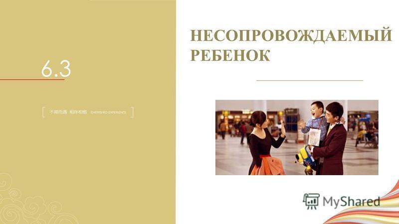 НЕСОПРОВОЖДАЕМЫЙ РЕБЕНОК 6.3