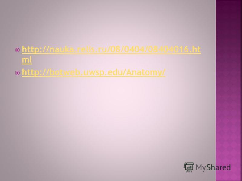 http://nauka.relis.ru/08/0404/08404016. ht ml http://nauka.relis.ru/08/0404/08404016. ht ml http://botweb.uwsp.edu/Anatomy/ http://botweb.uwsp.edu/Anatomy/