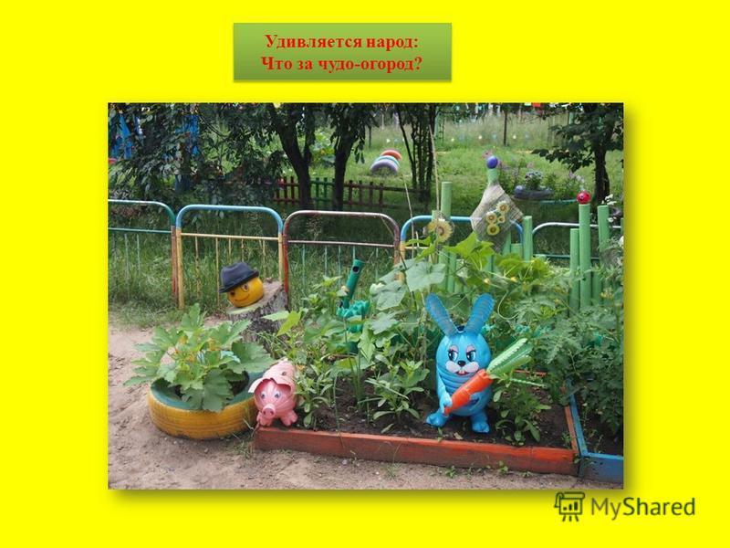 ззззз Удивляется народ: Что за чудо-огород?