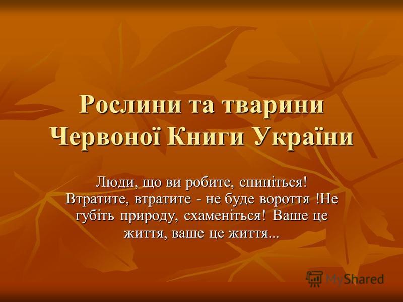 Рослини та тварини Червоної Книги України Люди, що ви робите, спиніться! Втратите, втратите - не буде вороття !Не губіть природу, схаменіться! Ваше це життя, ваше це життя...
