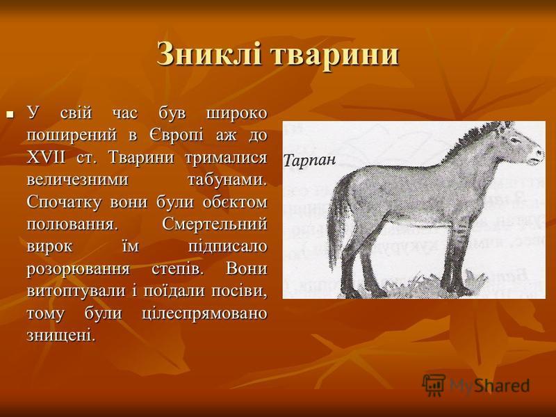 Зниклі тварини У свій час був широко поширений в Європі аж до ХVІІ ст. Тварини трималися величезними табунами. Спочатку вони були обєктом полювання. Смертельний вирок їм підписало розорювання степів. Вони витоптували і поїдали посіви, тому були цілес