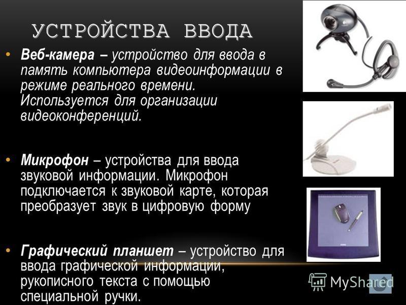 Веб-камера – устройство для ввода в память компьютера видеоинформации в режиме реального времени. Используется для организации видеоконференций. Микрофон – устройства для ввода звуковой информации. Микрофон подключается к звуковой карте, которая прео