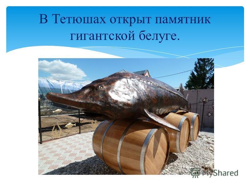 В Тетюшах открыт памятник гигантской белуге.