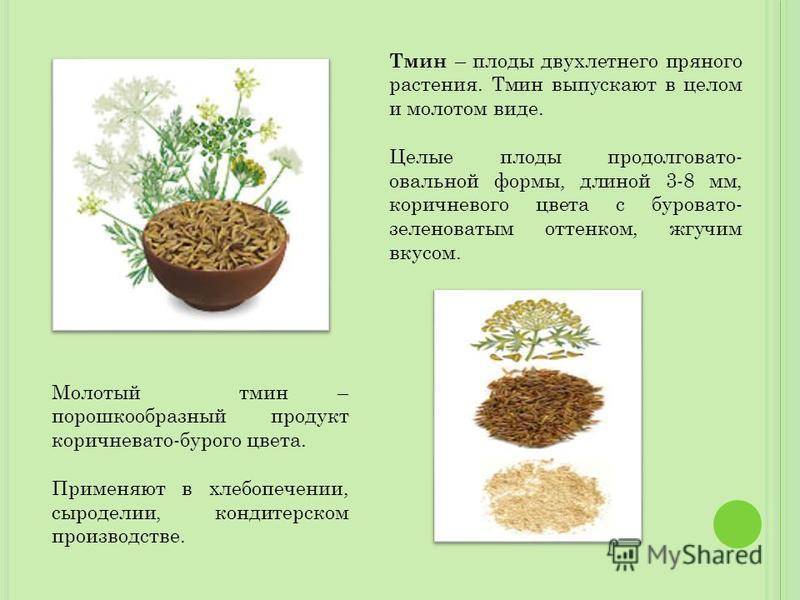 Тмин – плоды двухлетнего пряного растения. Тмин выпускают в целом и молотом виде. Целые плоды продолговато- овальной формы, длиной 3-8 мм, коричневого цвета с буровато- зеленоватым оттенком, жгучим вкусом. Молотый тмин – порошкообразный продукт корич