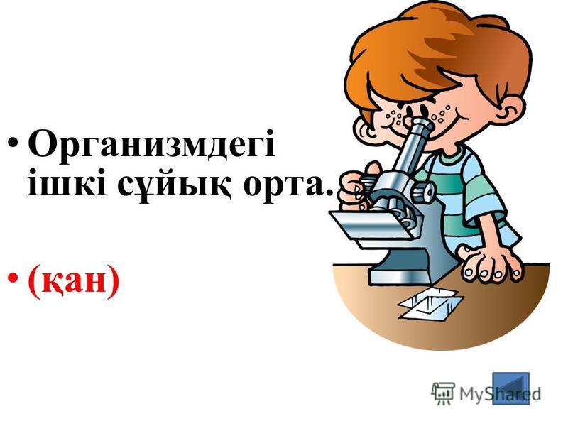 Организмдегі ішкі сұйық орта. (қан)