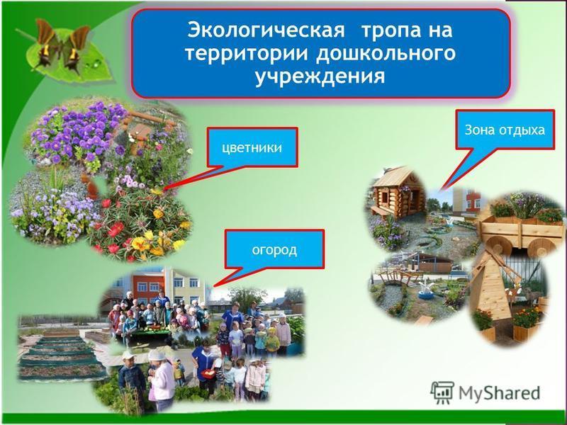 Экологическая тропа на территории дошкольного учреждения цветники огород Зона отдыха