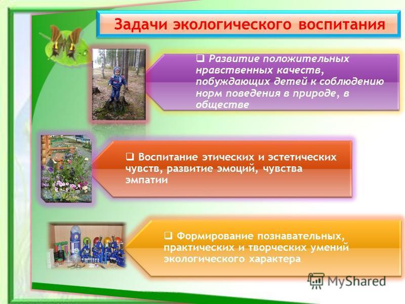 Задачи экологического воспитания