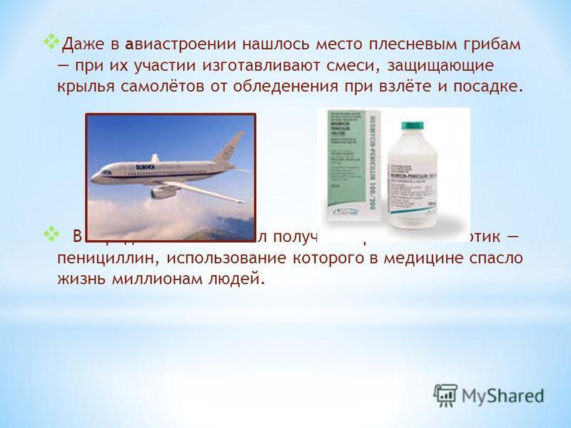 Даже в авиастроении нашлось место плесневым грибам при их участии изготавливают смеси, защищающие крылья самолётов от обледенения при взлёте и посадке. В середине ХХ века был получен первый антибиотик пенициллин, использование которого в медицине спа