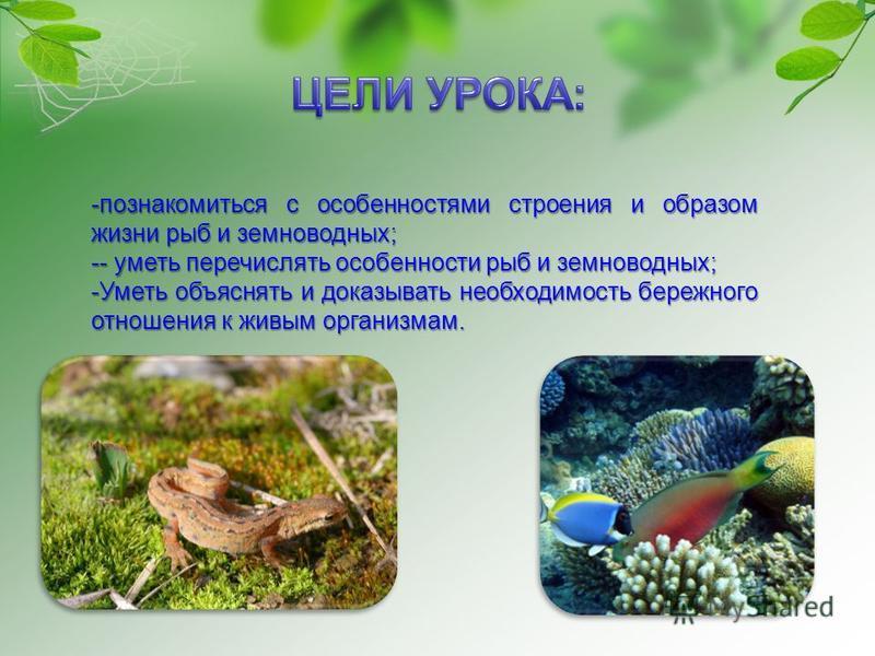 -познакомиться с особенностями строения и образом жизни рыб и земнаоводных; -- уметь перечислять особенности рыб и земнаоводных; -Уметь объяснять и доказывать необходимость бережного отношения к живым организмам.