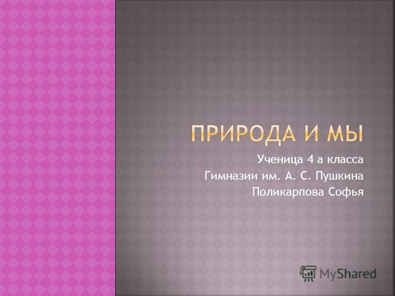 Ученица 4 а класса Гимназии им. А. С. Пушкина Поликарпова Софья