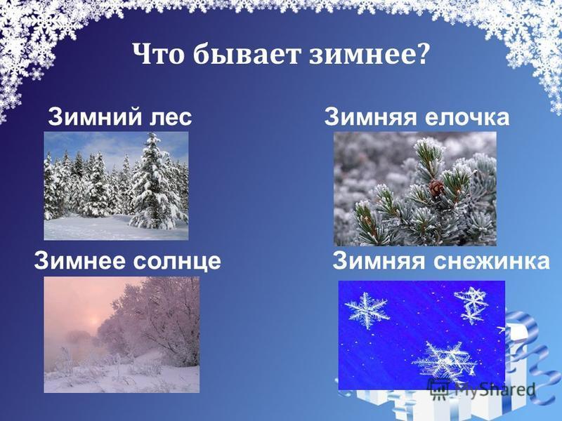 Что бывает зимнее? Зимний лес Зимняя елочка Зимнее солнце Зимняя снежинка
