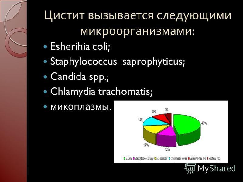 Цистит вызывается следующими микроорганизмами : Esherihia coli; Staphylococcus saprophyticus; Candida spp.; Chlamydia trachomatis; микоплазмы..