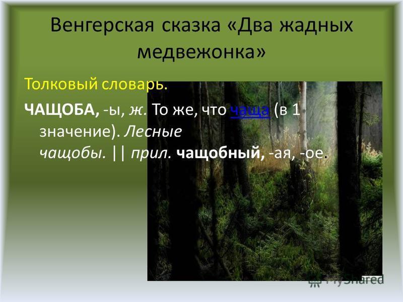 Венгерская сказка «Два жадных медвежонка» Толковый словарь. ЧАЩОБА, -ы, ж. То же, что чаща (в 1 значение). Лесные чащобы. || прил. чащобный, -ая, -ое.чаща