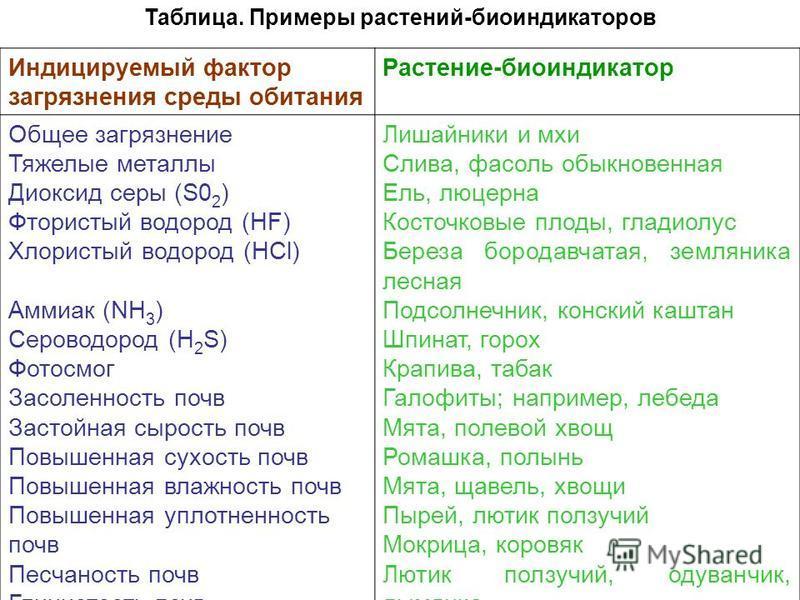 Таблица. Примеры растений-биоиндикаторов Индицируемый фактор загрязнения среды обитания Растение-биоиндикатор Общее загрязнение Тяжелые металлы Диоксид серы (S0 2 ) Фтористый водород (HF) Хлористый водород (НСl) Аммиак (NH 3 ) Сероводород (H 2 S) Фот