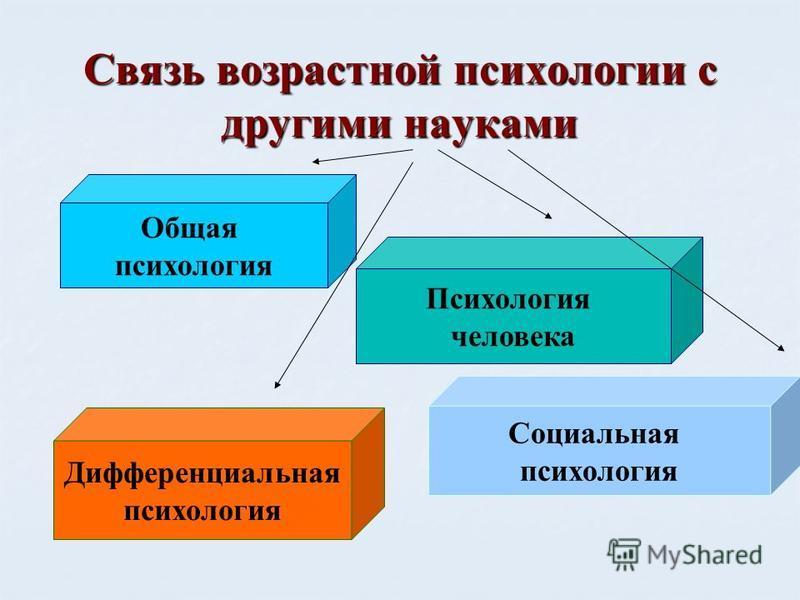 Связь возрастной психологии с другими науками Общая психология Социальная психология Дифференциальная психология Психология человека
