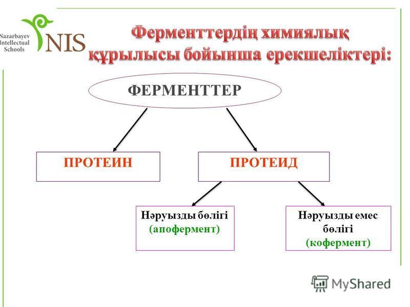 ФЕРМЕНТТЕР ПРОТЕИНПРОТЕИД Нәруызды бөлігі (апофермент) Нәруызды емес бөлігі (кофермент)