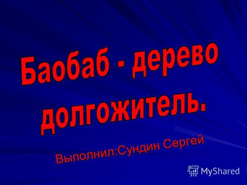 Выполнил:Сундин Сергей