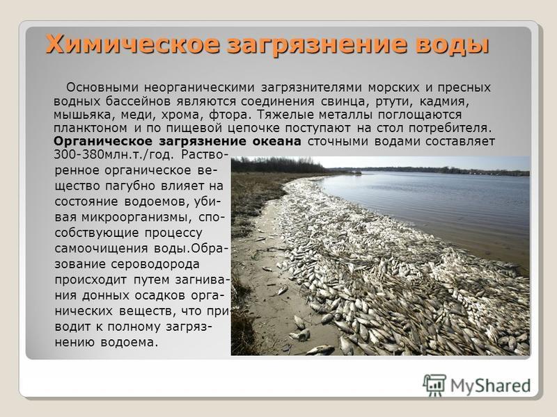 Химическое загрязнение воды Химическое загрязнение воды Основными неорганическими загрязнителями морских и пресных водных бассейнов являются соединения свинца, ртути, кадмия, мышьяка, меди, хрома, фтора. Тяжелые металлы поглощаются планктоном и по пи