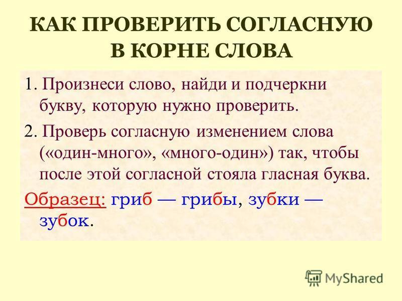 КАК ПРОВЕРИТЬ СОГЛАСНУЮ В КОРНЕ СЛОВА 1. Произнеси слово, найди и подчеркни букву, которую нужно проверить. 2. Проверь согласную изменением слова («один-много», «много-один») так, чтобы после этой согласной стояла гласная буква. Образец: гриб грибы,
