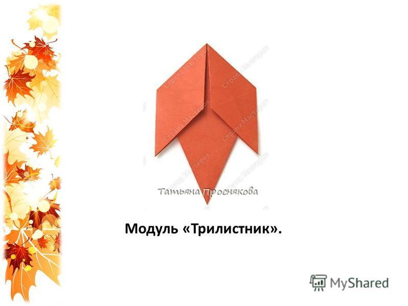 Модуль «Трилистник».
