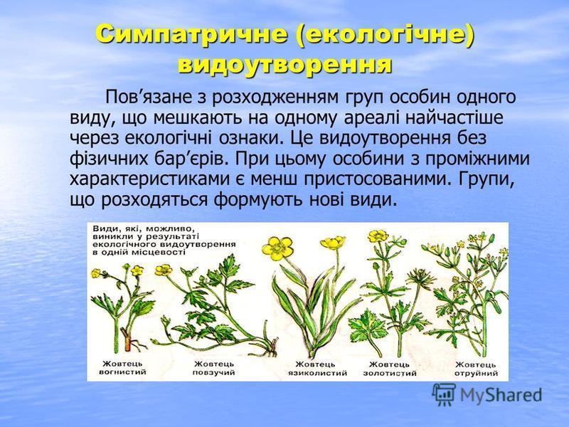 Симпатричне (екологічне) видоутворення Повязане з розходженням груп особин одного виду, що мешкають на одному ареалі найчастіше через екологічні ознаки. Це видоутворення без фізичних барєрів. При цьому особини з проміжними характеристиками є менш при