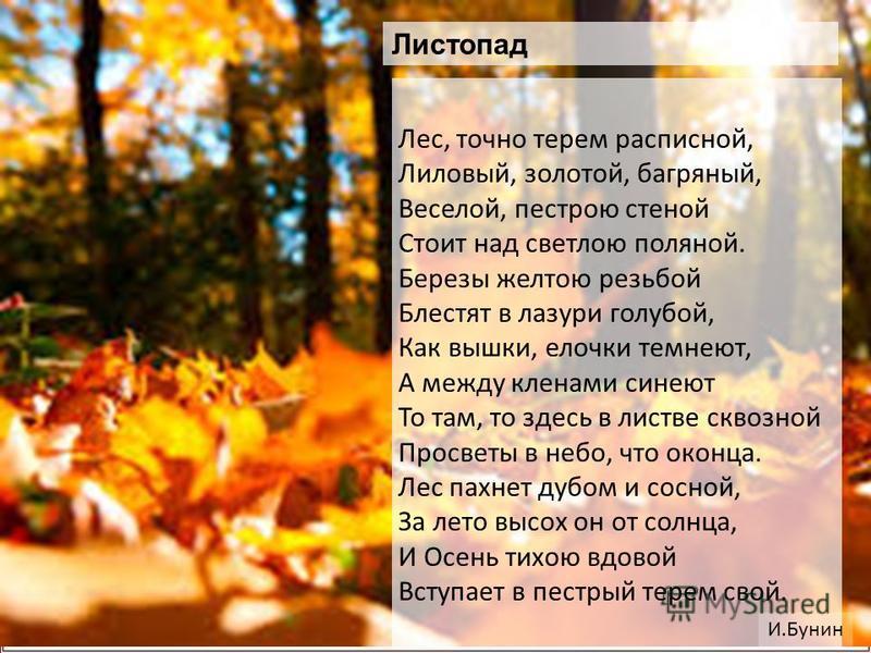 Лес, точно терем расписной, Лиловый, золотой, багряный, Веселой, пестрою стеной Стоит над светлою поляной. Березы желтою резьбой Блестят в лазури голубой, Как вышки, елочки темнеют, А между кленами сынеют То там, то здесь в листве сквозной Просветы в