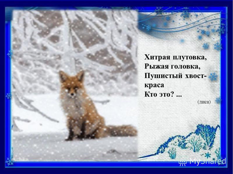 Длинноухий очень ловко По утрам грызет морковку. Он от волка и лисы Быстро прячется в кусты. Кто такой он, этот серый, Что несётся кувырком? Летом сер, зимою - белый, Он, скажите, вам знаком? (заяц)