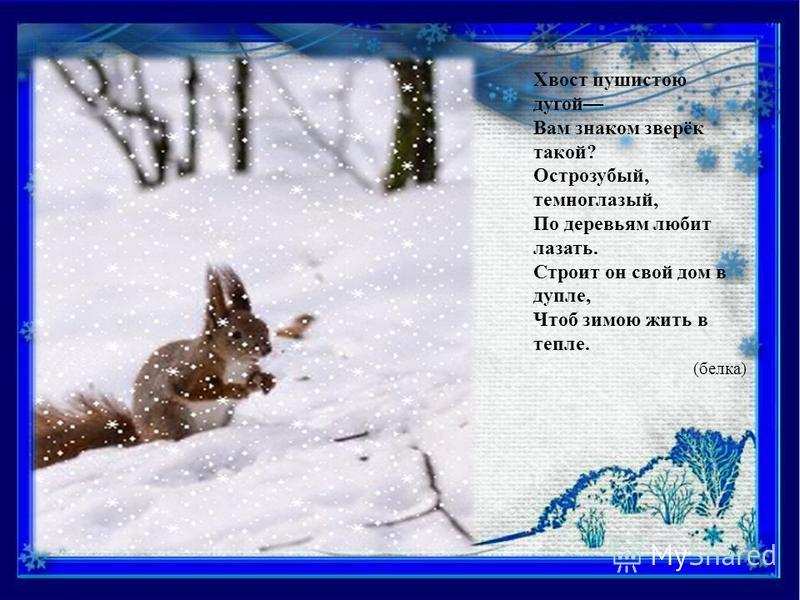 Косолапый и мохнатый, Греет он в берлоге лапы. Летом любит погулять И зверушек охранять. А зимой, под вьюжный вой, Спит в избушке снеговой. (медведь)