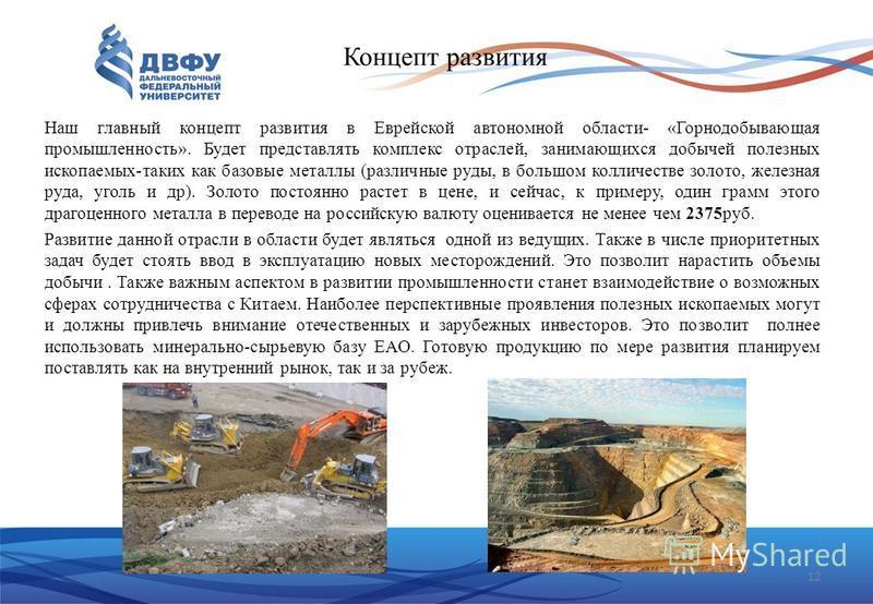12 Концепт развития Наш главный концепт развития в Еврейской автономной области- «Горнодобывающая промышленность». Будет представлять комплекс отраслей, занимающихся добычей полезных ископаемых-таких как базовые металлы (различные руды, в большом кол