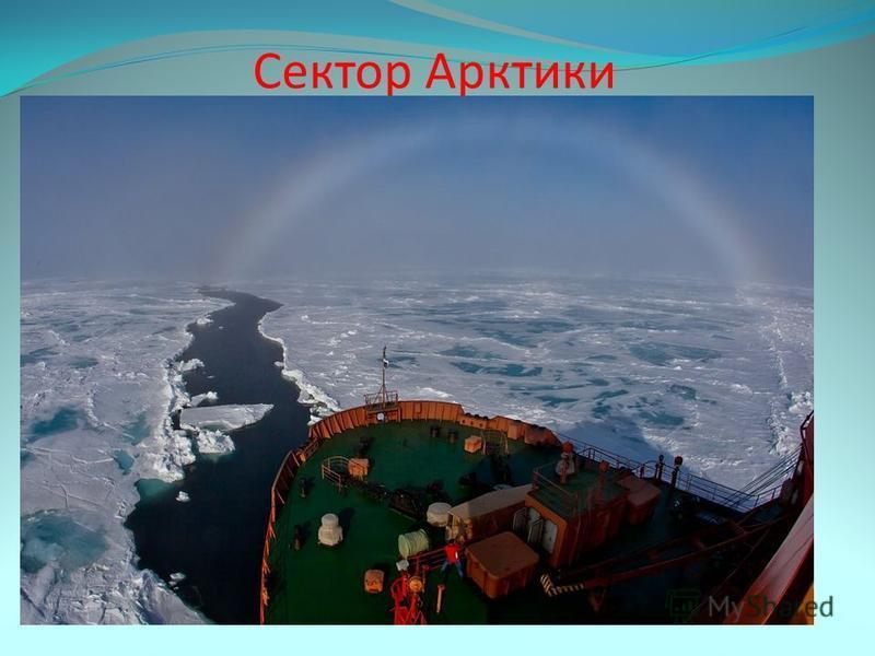 Сектор Арктики