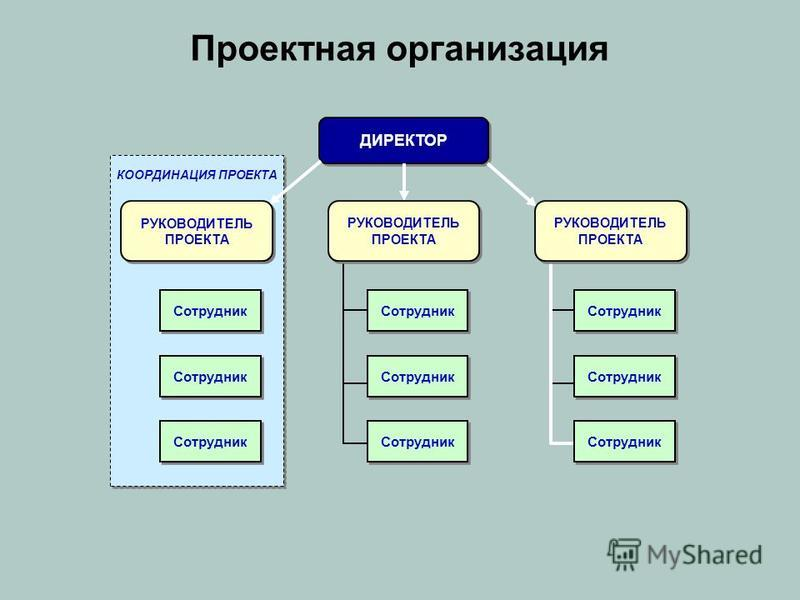 Проектная организация ДИРЕКТОР Сотрудник КООРДИНАЦИЯ ПРОЕКТА РУКОВОДИТЕЛЬ ПРОЕКТА
