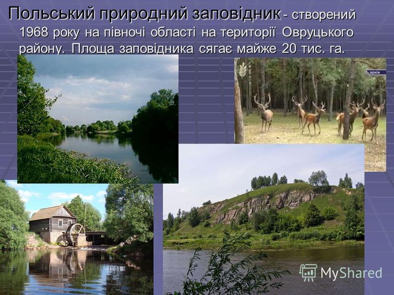Польський природний заповідник - створений 1968 року на півночі області на території Овруцького району. Площа заповідника сягає майже 20 тис. га. Польський природний заповідник - створений 1968 року на півночі області на території Овруцького району.