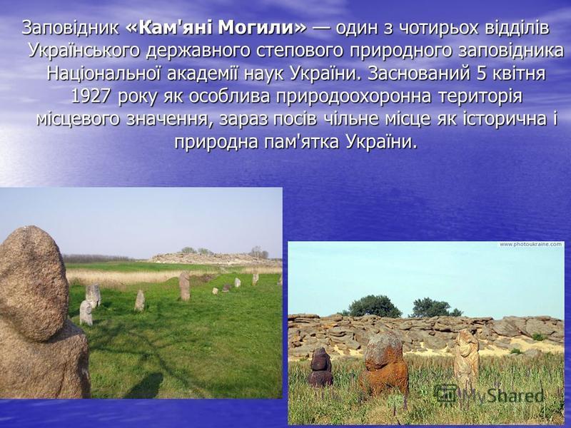 Заповідник «Кам'яні Могили» один з чотирьох відділів Украïнського державного степового природного заповідника Національної академії наук України. Заснований 5 квітня 1927 року як особлива природоохоронна територія місцевого значення, зараз посів чіль