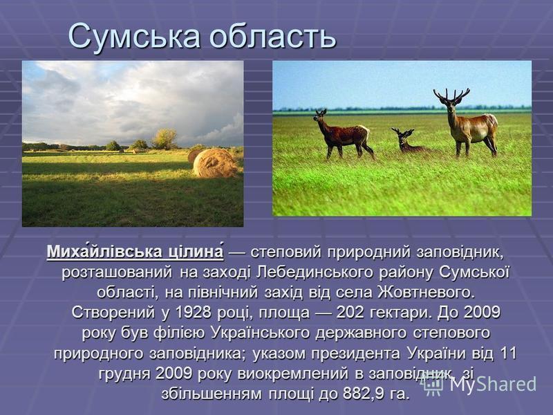 Сумська область Миха́йлівська цілина́ степовий природний заповідник, розташований на заході Лебединського району Сумської області, на північний захід від села Жовтневого. Створений у 1928 році, площа 202 гектари. До 2009 року був філією Украïнського