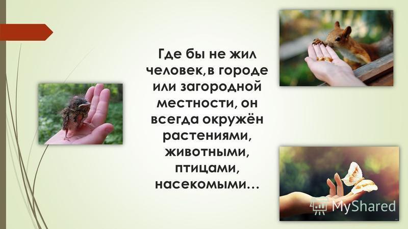Остановил олень свой бег: Будь человеком, человек! В тебя мы верим – не солги Ты береги нас, береги!