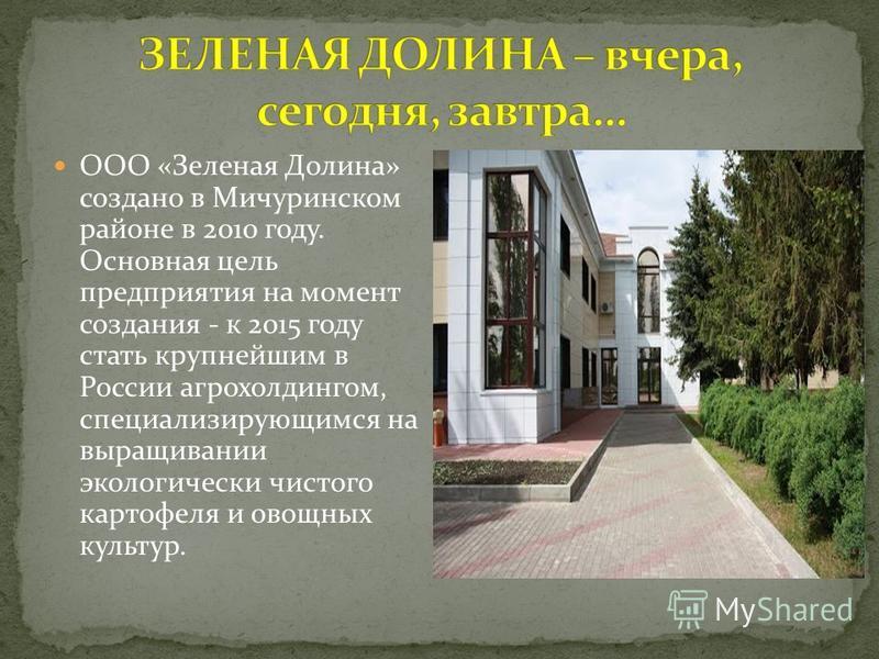 ООО «Зеленая Долина» создано в Мичуринском районе в 2010 году. Основная цель предприятия на момент создания - к 2015 году стать крупнейшим в России агрохолдингом, специализирующимся на выращивании экологически чистого картофеля и овощных культур.