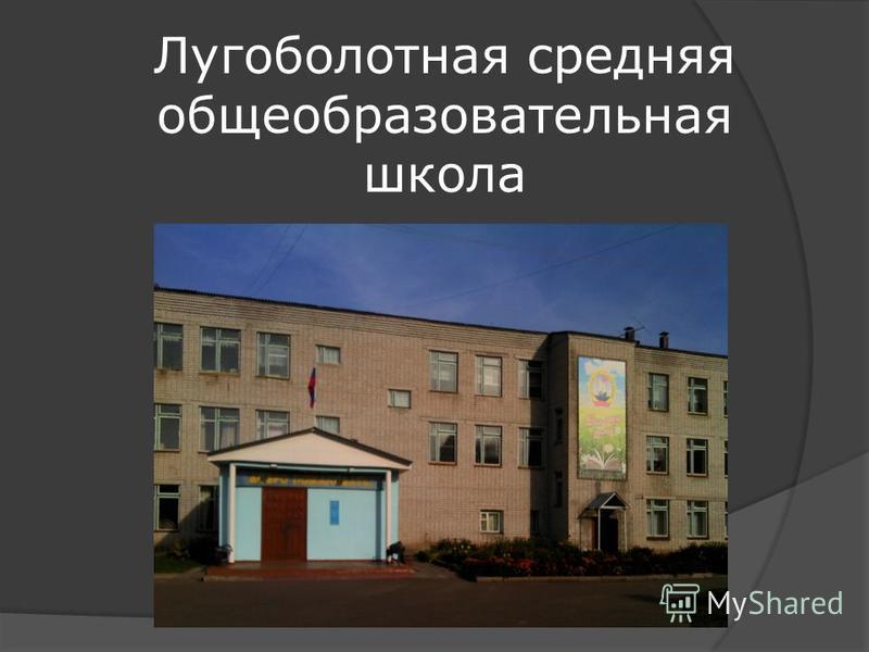 Лугоболотная средняя общеобразовательная школа