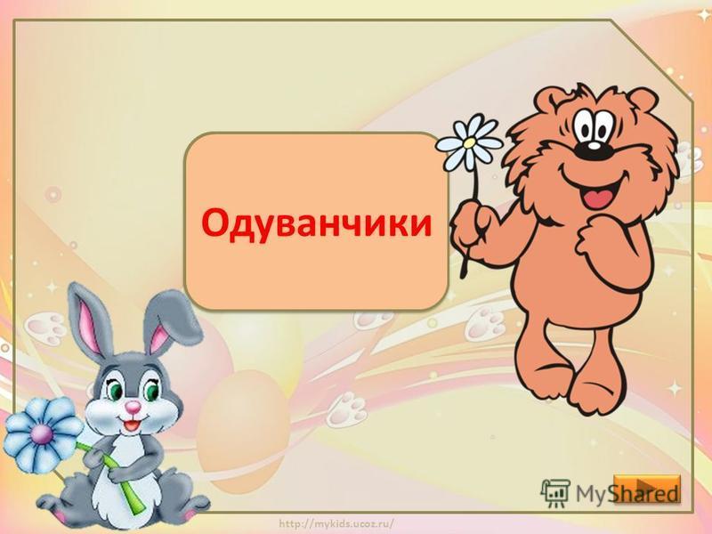 http://mykids.ucoz.ru/ Какие цветы расцвели, пока Заяц шёл к Медвежонку? Ромашки