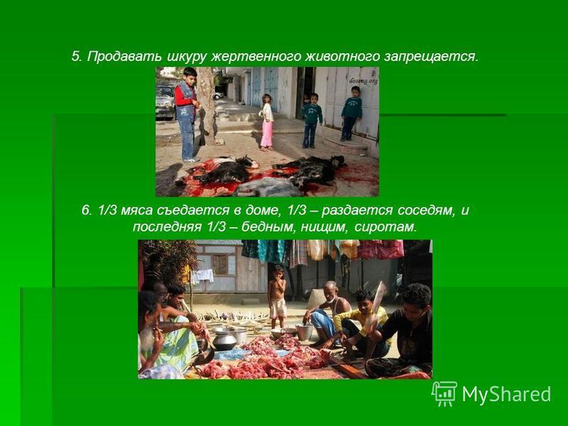 5. Продавать шкуру жертвенного животного запрещается. 6. 1/3 мяса съедается в доме, 1/3 – раздается соседям, и последняя 1/3 – бедным, нищим, сиротам.