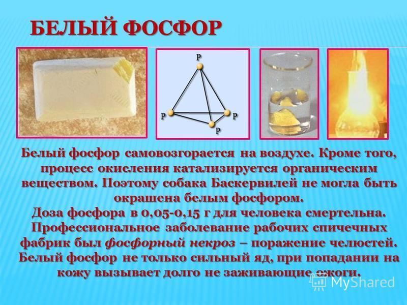БЕЛЫЙ ФОСФОР БЕЛЫЙ ФОСФОР Белый фосфор самовозгорается на воздухе. Кроме того, процесс окисления катализируется органическим веществом. Поэтому собака Баскервилей не могла быть окрашена белым фосфором. Доза фосфора в 0,05-0,15 г для человека смертель