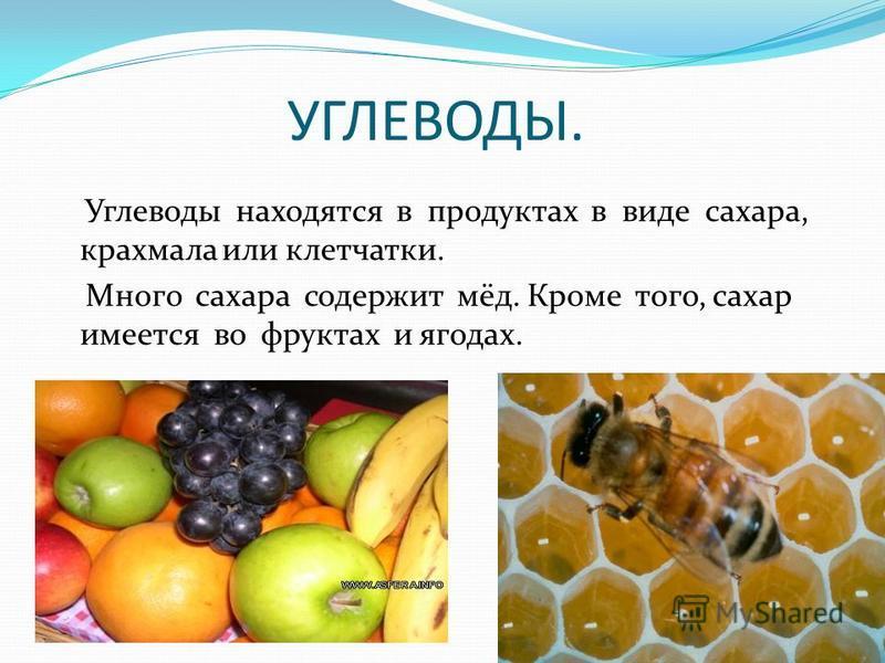 УГЛЕВОДЫ. Углеводы находятся в продуктах в виде сахара, крахмала или клетчатки. Много сахара содержит мёд. Кроме того, сахар имеется во фруктах и ягодах.
